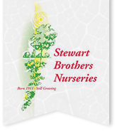 Stewart Brothers Nursery logo